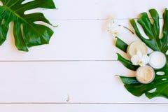De schoonheidsmiddelen van Nd van de kokosnotenolie royalty-vrije stock fotografie