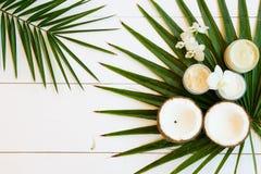 De schoonheidsmiddelen van Nd van de kokosnotenolie royalty-vrije stock foto's