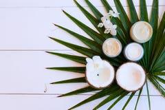De schoonheidsmiddelen van Nd van de kokosnotenolie stock foto