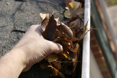 De Schoonmaakbeurt van de daling - Bladeren in Goot royalty-vrije stock afbeelding