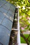 De Schoonmaakbeurt van de daling - Bladeren in Goot Royalty-vrije Stock Fotografie