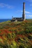 De schoorsteen blijft bij de Mijn van het Tin Levant in Cornwall stock fotografie