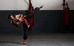 De schop van vechtsporten Stock Foto