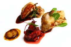 De schotel met vlees en pekelt Stock Foto