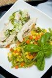 De schotel van de groente en van het vlees Royalty-vrije Stock Foto's