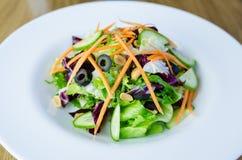 De schotel van het saladevoedsel, vegetariër Stock Foto's