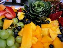 De Schotel van het verse Fruit Stock Afbeeldingen