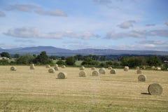 De Schotse Hooglanden, typisch landschap stock foto