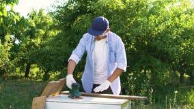 De schrijnwerker in beschermende glazen poetst houten plank met elektrische schuurmachine op stock footage