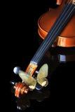 De schrijvers uit de klassieke oudheid van de vlinder Royalty-vrije Stock Foto