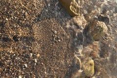 De schuimende overzeese kust bij het strand, sluit omhoog Stock Afbeeldingen