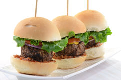 De schuiven van de hamburger Royalty-vrije Stock Fotografie