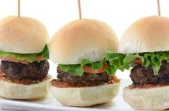 De schuiven van de hamburger Stock Afbeelding