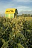 De Schuur van het graan en Graan Stock Afbeelding