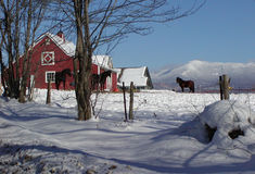 De Schuur van het Paard van Vermont Stock Afbeelding