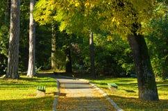 De scène van de de herfstochtend in Topcider-park, wind blaast en de bladeren vallen Royalty-vrije Stock Foto