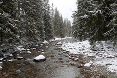 De scène van de rivier in wintertijd Royalty-vrije Stock Foto
