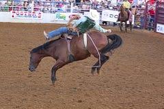 De scène van de rodeo. Royalty-vrije Stock Afbeeldingen