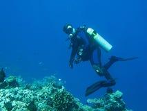 De scuba-duiker draait om de camera te bekijken Het blauwe water is diep op de achtergrond De scuba-duiker draagt in volledig mat royalty-vrije stock foto