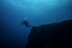 De scuba-duiker gaat in Diep Royalty-vrije Stock Afbeeldingen
