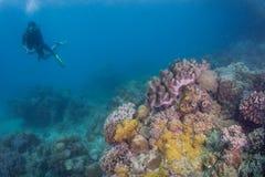 De scuba-duiker neemt foto Royalty-vrije Stock Afbeelding