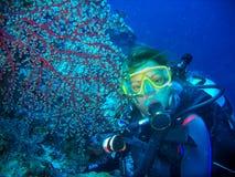De scuba-duiker is onderwater met een vlak rood koraal De vrouwen draagt in vrij duikenmateriaal: geel masker, regelgever en blau stock afbeelding