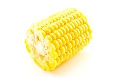 De Sectie van de maïs Stock Afbeeldingen