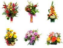 De selectie van bloemstukken Stock Foto