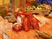 De selectie van zeevruchten Stock Fotografie