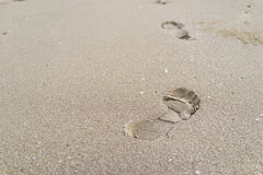 De selectieve nadruk op grote voetafdruk op het zand als het levensreis bedriegt royalty-vrije stock foto's