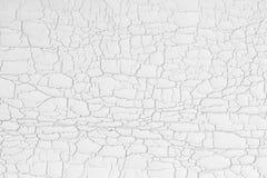 De selectieve plastic achtergrond van de nadruk abstracte barst stock foto's