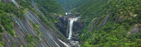 De Senpiro nedgångarna på den Yakushima ön, Japan Royaltyfri Foto