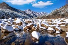 De Seoraksanbergen wordt behandeld door sneeuw in de winter, Korea stock afbeelding
