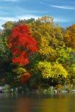De Sereniteit van de herfst Stock Afbeelding