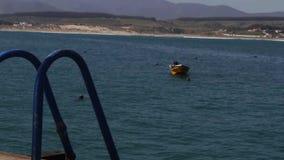 De sereniteit van een tegengehouden boot stock footage