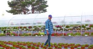 De Serre van tuinmansupervising plants in stock videobeelden