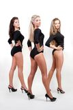 De sexy dames van het trio in zwarte lichaamskostuums Royalty-vrije Stock Foto's