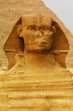 De Sfinx en de Piramides Stock Foto's