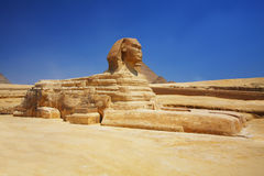 De sfinx en de piramides in Egypte Royalty-vrije Stock Afbeeldingen