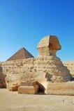 De sfinx in Giza Royalty-vrije Stock Afbeelding