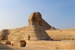 De Sfinx - Giza Egypte Royalty-vrije Stock Afbeeldingen