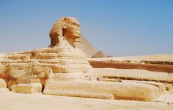De Sfinx in Kaïro, Giza, Egypte stock afbeeldingen