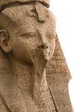 De sfinx van het graniet in Petersburg Stock Fotografie