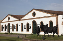 De Sherry Bodega, Spanje van Osborne royalty-vrije stock foto