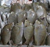 De sherryvissen in een marktkraam voor verkopen royalty-vrije stock fotografie