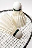 De shuttles van het badminton op de racket Stock Afbeeldingen