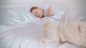 De siete años un muchacho que duerme reservado en la cama en su sitio, oso del juguete cerca de él blur almacen de metraje de vídeo