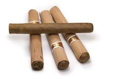 De sigaar van de charmeur y Julieta Stock Afbeelding