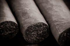 De sigaren sluiten omhoog Royalty-vrije Stock Afbeelding