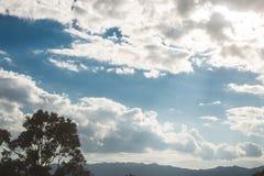 De silhouetbomen op aardige blauwe hemel betrekt ver weg achtergrond en berg Royalty-vrije Stock Afbeelding